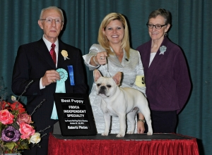 Best Puppy FBDCA Specialty