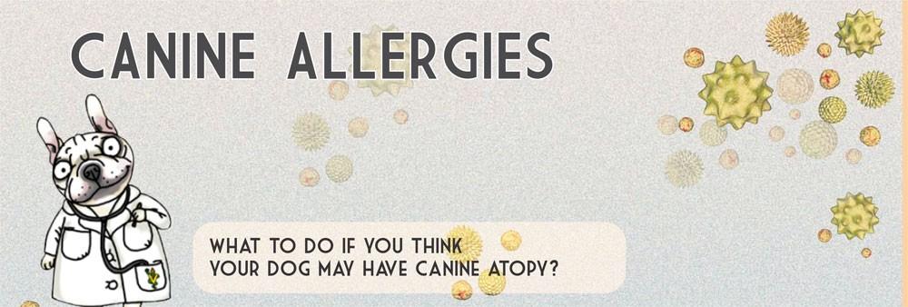 floresta-banner-allergies